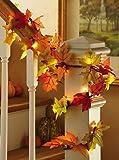 11 Ft Lighted Autumn Fall Garland Thanksgiving