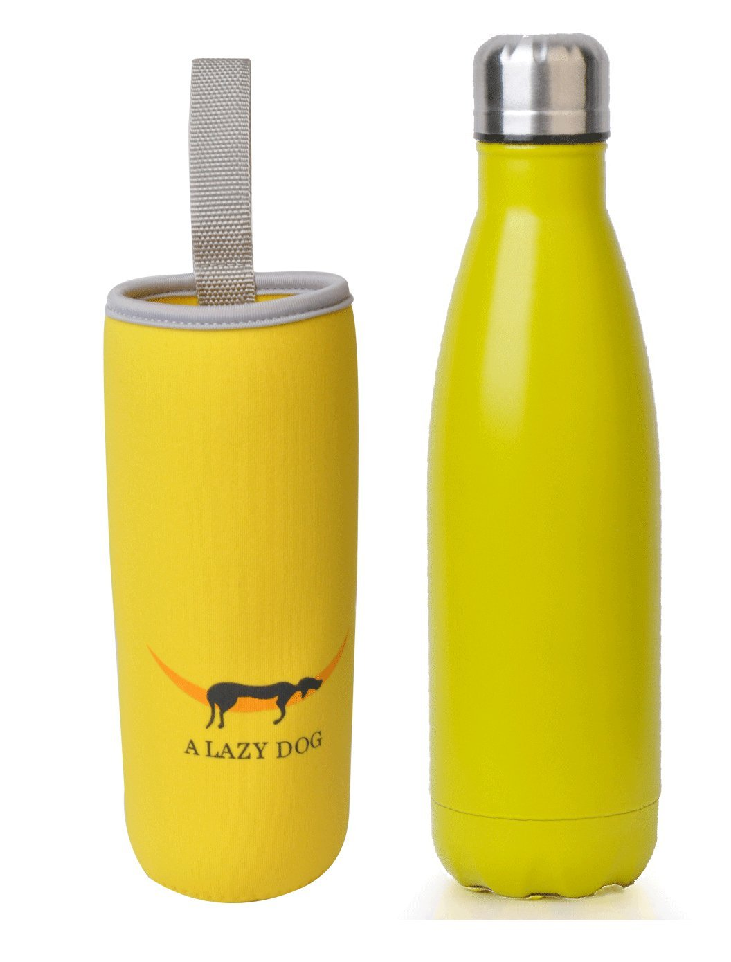 Amazon.com : A Lazy Dog Vacuum Insulated Water Bottle 17 Oz Double ...