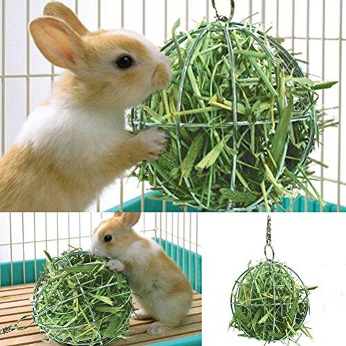 - SNNplapla Hay Manger Food Ball For Guinea Pig Hamster Rat Rabbit Fun