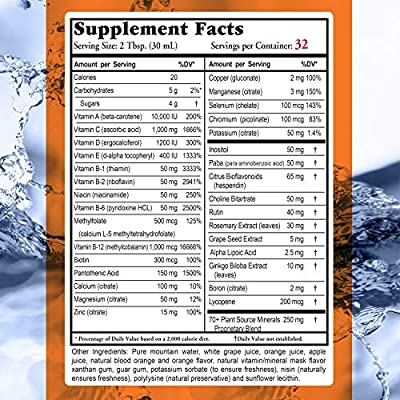 Buried Treasure VM100 Complete Daily Liquid Vitamins and Minerals Plus Antioxidants Supplement for Maximum Absorption Great Tasting Orange Zest Flavor 32 Servings 32 Ounce