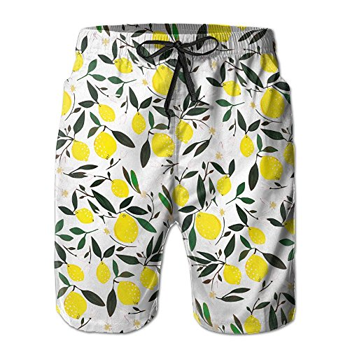 HATS NEW Lemon Pattern Men's Casual Shorts Swim Trunks Fit Performance Quick Dry Boardshorts for $<!--$16.71-->
