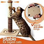 4 Paws Stuff Tall Cat Scratching Post Cat Interactive Toys - Cat Scratch Post Cats Kittens - Plush Sisal Scratch Pole Cat Scratcher - 22 inches (Beige) 11