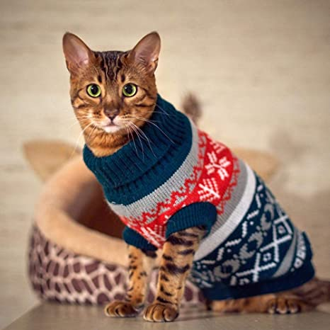 petalk - Jersey de Punto con Cuello de Tortuga para Perros y Gatos pequeños: Amazon.es: Productos para mascotas