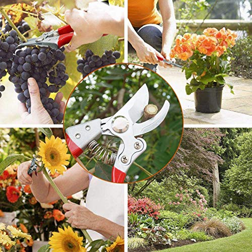 BOBKY Garden Pruning Shears Hand Pruner with Safety Lock Sharp Trimmer Pruners Heavy Duty Cutter Clipper for Garden (Green) by BOBKY (Image #3)