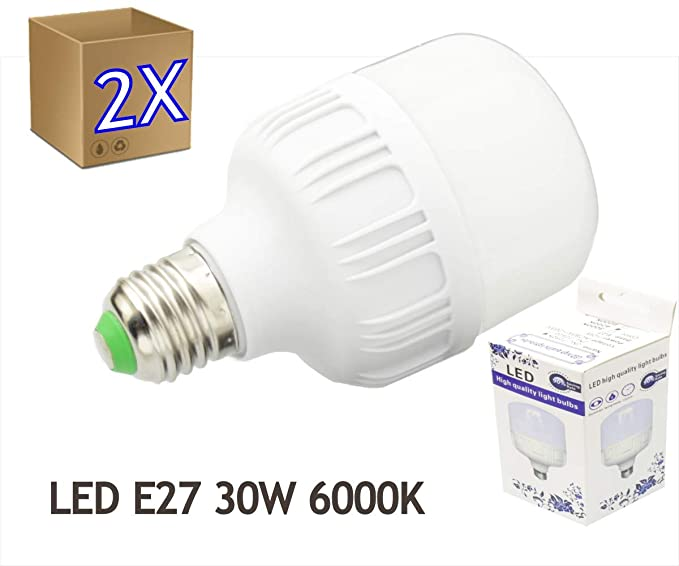 2 x Bombilla LED 30W rosca E27 luz 6000ºK blanco frio