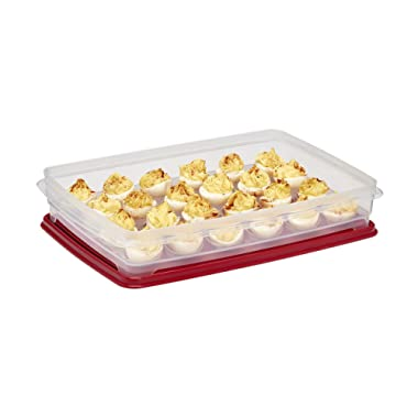 Buddeez, Inc 17604R-7427-BAG Egg Keeper & Storage Container Tray