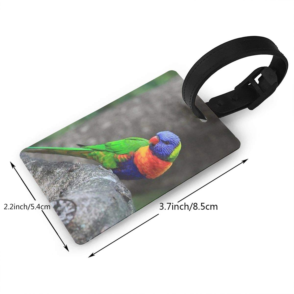 2 Pack Luggage Tags Parrot Cruise Luggage Tag For Travel Bag Suitcase Accessories