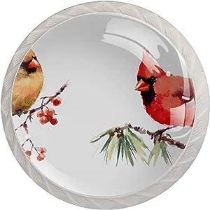 4 Pcs ABS Glass Door Knobs, Round Doorknob/Glass Drawer Knobs/Cabinet Cupboard Pull Knobs/Door Pull Handle with Screws Red Bird