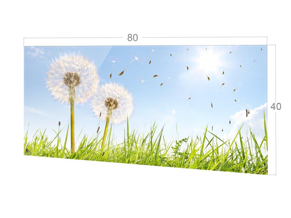 grazdesign 200116 60x40 sp spritzschutz glas f r k che. Black Bedroom Furniture Sets. Home Design Ideas
