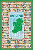 Irish Ireland Family Crest Coat of Arms Map Poster