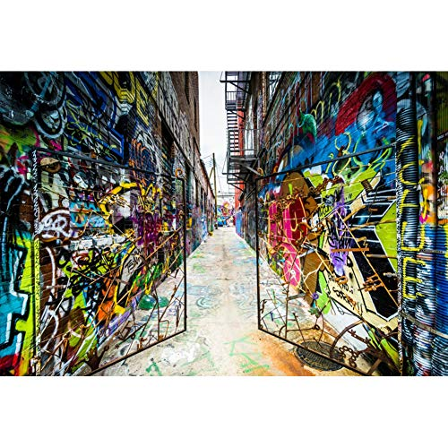 Backdrop City Hip Hop (Leowefowa 7x5ft Vinyl Photography Backdrop Graffiti Street Art Iron Gate Old City Buildings Street Hip Hop Photo Background Event Party Decoration Portrait Photo Shoot Studio Photo Booth)