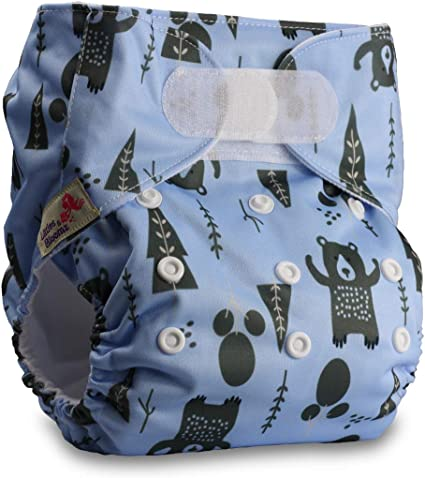 Set of 1 Littles /& Bloomz with 1 Bamboo Charcoal Insert Reusable Pocket Cloth Nappy Pattern 50 Fastener: Popper