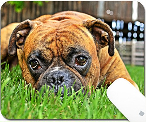 - Luxlady Gaming Mousepad 9.25in X 7.25in IMAGE: 30889265 pure bred boxer dog portrait close up on natural background