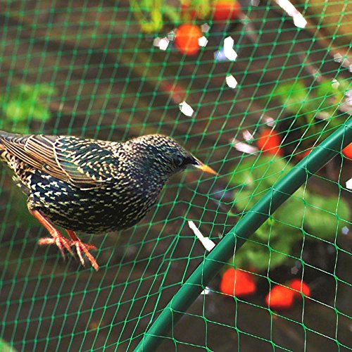 Senneny Bird Netting, 33Ft x 13Ft Anti-Bird Netting 100 Pcs Nylon Cable Ties, Green Garden Netting Protecting Plants Fruit Trees from Rodents Birds Deer by Senneny (Image #3)