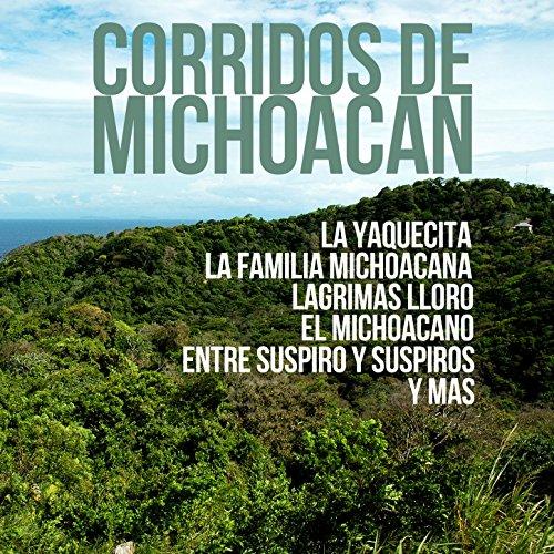 Top familia michoacana
