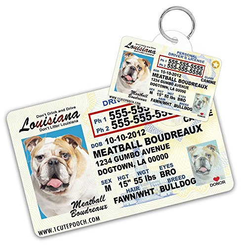 Louisiana Driver License Custom Dog Tag for Pets and Wallet Card - Personalized Pet ID Tags - Dog Tags For Dogs - Dog ID Tag - Personalized Dog ID Tags - Cat ID Tags - Pet ID Tags For Cats by 1 Cute Pooch