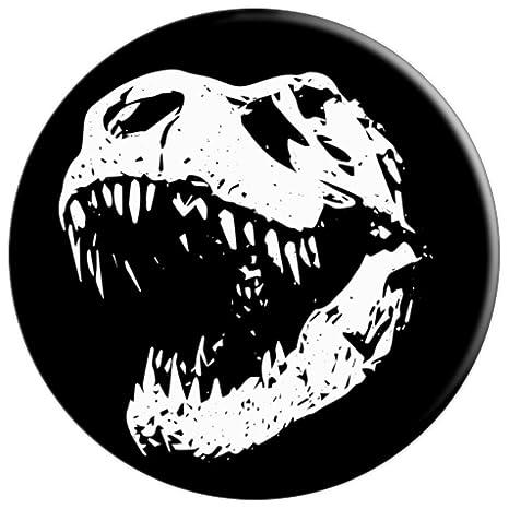 Amazon Com T Rex Skeleton Dino Roar Dinosaur Tyrannosaurus Rex