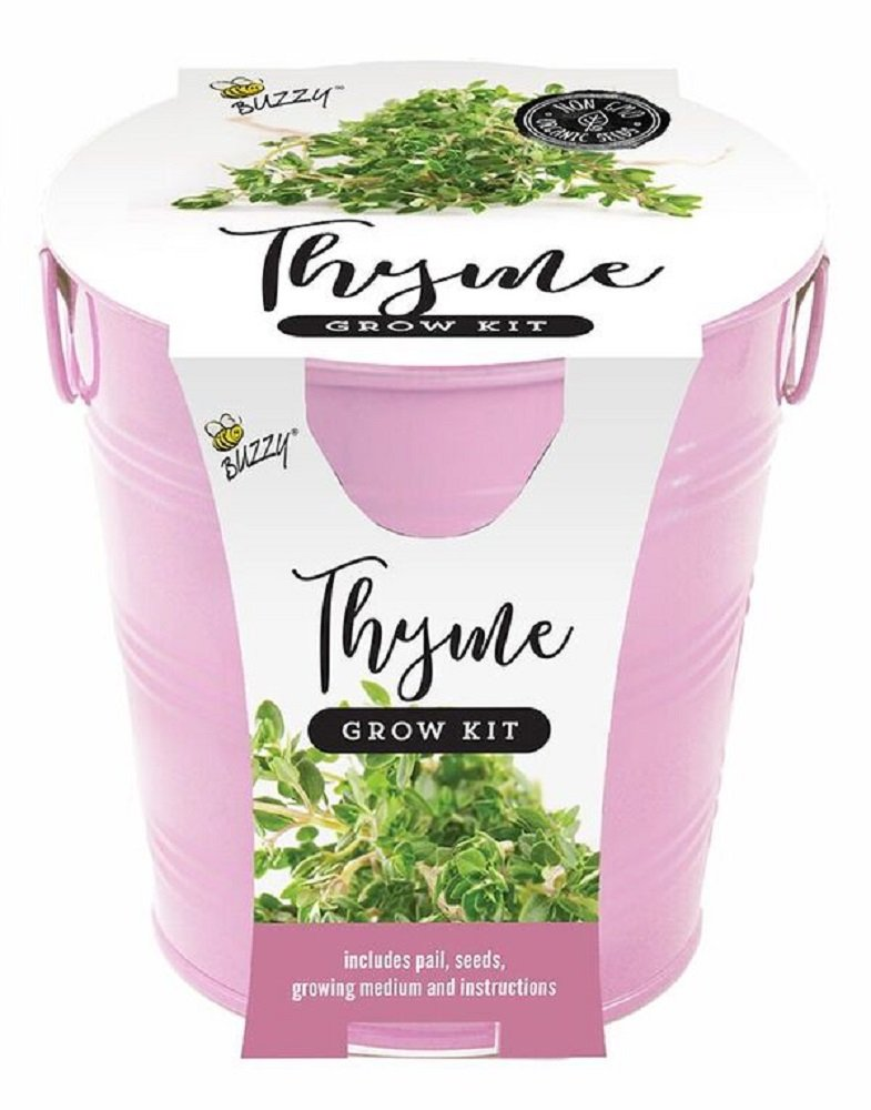 Amazon Buzzy Grow Kit Your Choice Of Forget Me Not Or Thyme