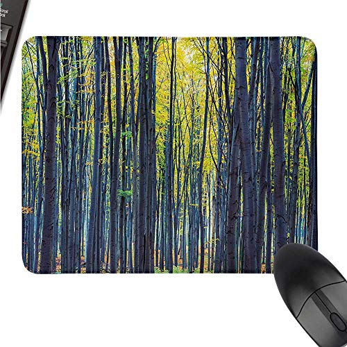 ZYcccTT Fall logitech Gaming Mouse padsize Beach Autumn Forest with Thin Deciduous Trees in European Wilderness Woodland Image W8xL9.5(inch) ()