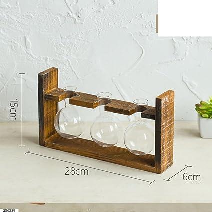 Ornamentos del florero/envase hidropónico/ botellas de vidrio transparente/ flor creativa-C