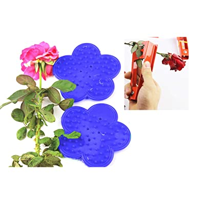 RuiLing 3-Pack Thorn and Leaf Stripping Tool, DIY Garden Flower Rose Thorn Remover Tool Rose Stripper for Florist (2pcs Plastic Rose Stripper, 1pc Metal Rose Plier) : Garden & Outdoor