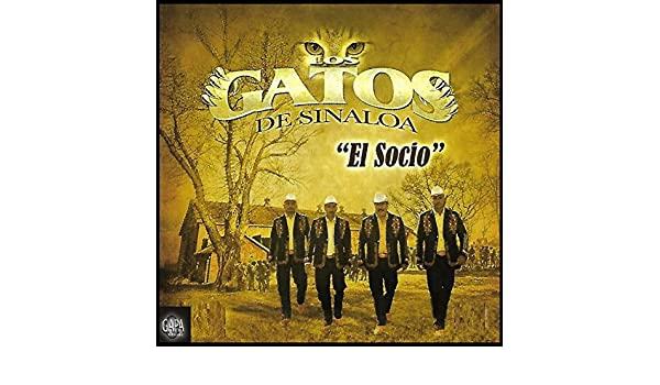Pala Raza Del Barrio by Los Gatos De Sinaloa on Amazon Music - Amazon.com