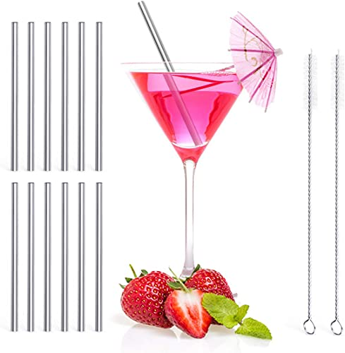 Teivio, 5-inch Extra Short Reusable Stainless Steel Drink Straws