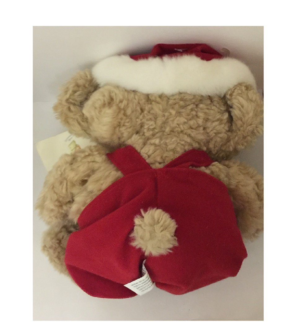 Amazon American Greetings Boomerang Christmas Bear Stuffed