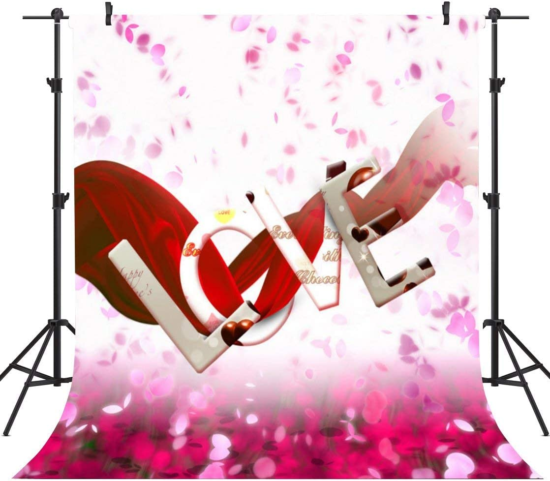 GoHeBe 10X10FT Seamless Valentines Day Theme Pictorial Cloth Customized Photography Backdrop Background Studio Prop VDD041C