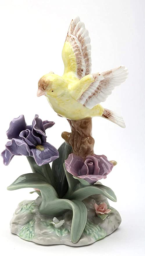 Cosmos Goldfinch with Iris