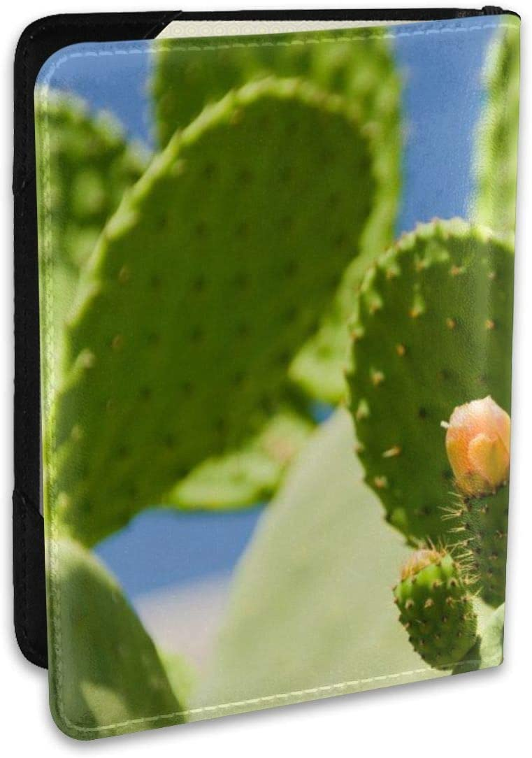 Cactus Flower Thorns Wall Leather Passport Holder Cover Case Travel One Pocket