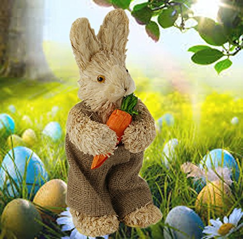 Easter Cute Bunny Rabbit with Carrot Decoration Sisal Straw Spring (Sisal Straw)