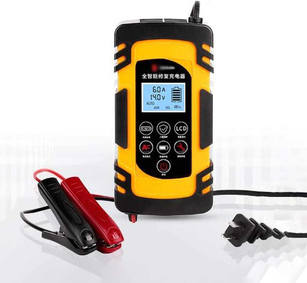 Angelay-Tian Cargador de batería de Coche, 12v batería de Plomo 24v Inteligente Pulso reparación de la Motocicleta de la Carretilla elevadora, 100W