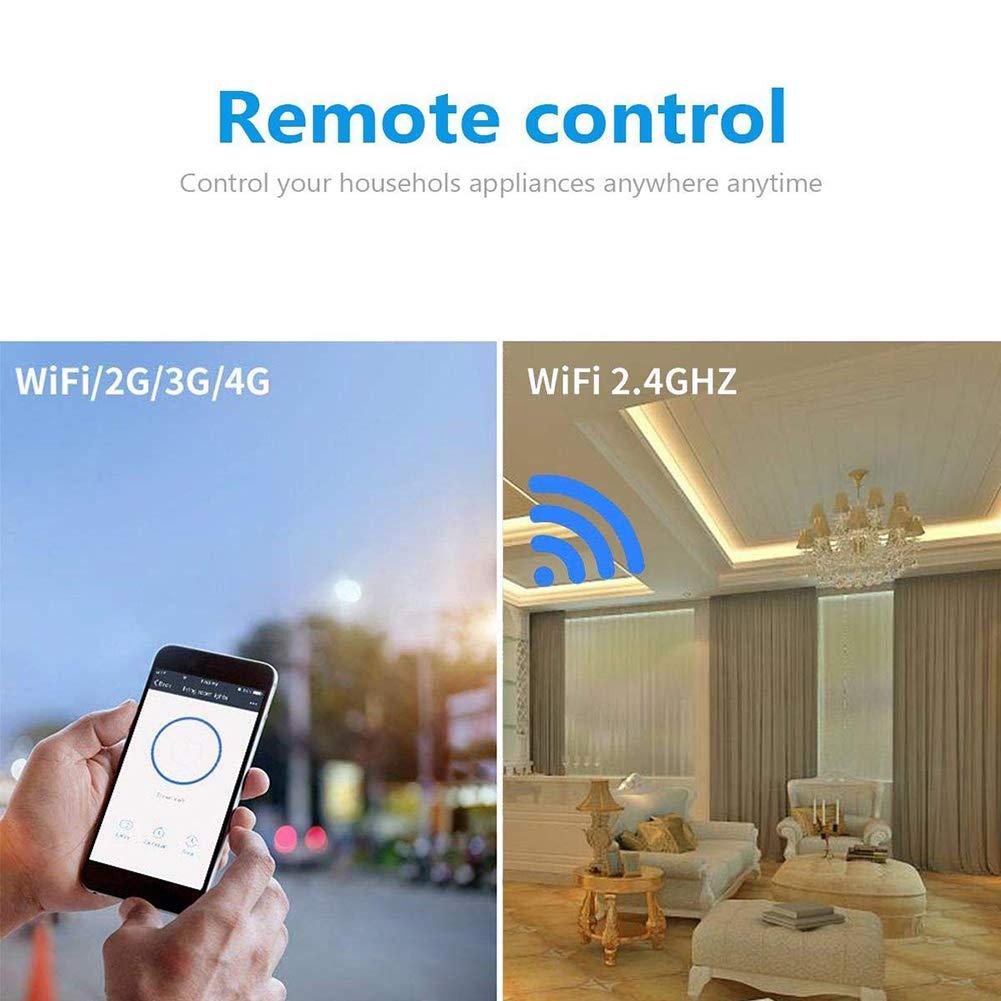 Unterst/ützung 2,4 GHz Rolladenuhr Uhr Schalter f/ür Rolladenmotor Rohrmotor Rolladenantrieb Rolladen Zeitschaltuhr Jalousien Schalter WiFi Kompatibel mit Alexa Echo Und Google Assistant