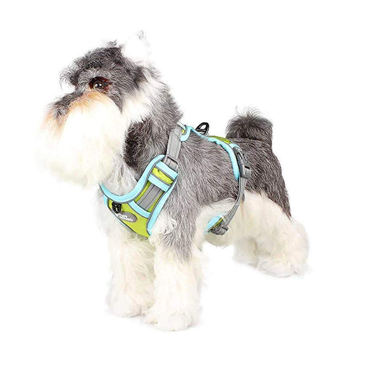 bluee Small bluee Small PETCUTE Dog Harness Soft Padded Dog Vest Harness Adjustable with Reflective Strip Padded Vest for Dog Training or Walking bluee S
