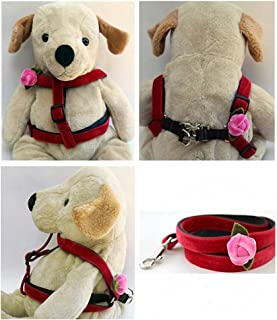 "product image for Diva-Dog 'Rosebud' Custom 5/8"" Wide Red Velvet Dog Step-in Harness with Plain or Engraved Buckle, Matching Leash Available - Teacup, XS/S"