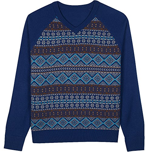 Blueberry Pet Men's Fair Isle Style V-Neck Sweater in Yale Blue, Small by Blueberry Pet