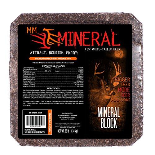 MONSTERMEAL MM Mineral Block (Mm Block)