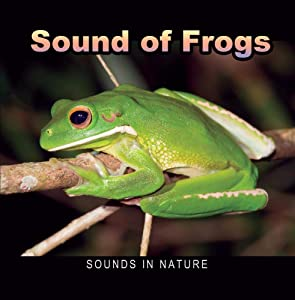Sound of Frogs CD - Amazon RainForest Frogs sing all night on edge of river