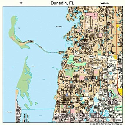 Amazoncom Large Street Road Map of Dunedin Florida FL Printed