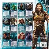 Justice League - Aquaman Official 2019 Calendar - Square Wall Calendar Format
