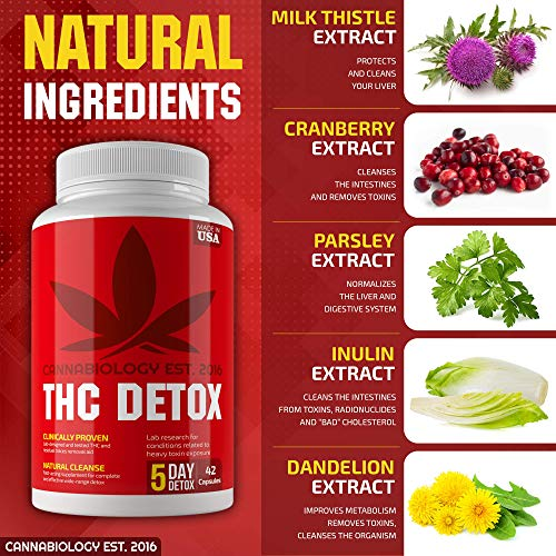 THC Detox Made in USA - BIO-Cleanse - Liver Detox, Urinary Tract & Kidney Cleanse - 5 Day Detox - Broad-Spectrum Toxin Cleanse - Natural THC Remover - Milk Thistle, Cranberry - Vegetarian Capsules by Cannabiology Est. 2016 (Image #3)