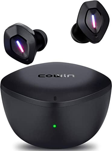 Cowin Apex Active Noise Cancelling Earbuds