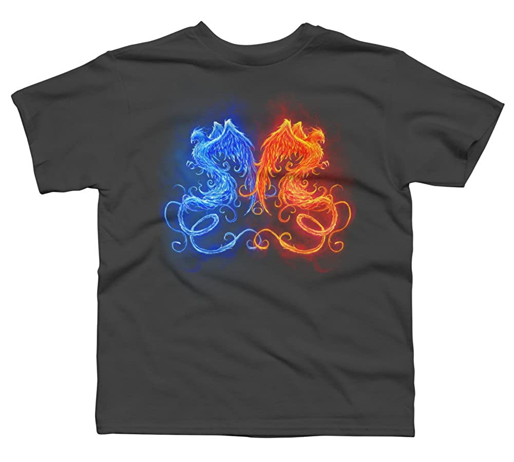 Design By Humans Ice and Fire Boys Youth Graphic T Shirt