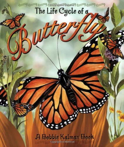 The Life Cycle of a Butterfly: Bobbie Kalman: 9780778706809 ...