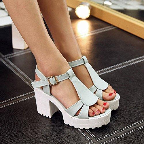 Carolbar Donna Open Toe Fibbia T-strap Charm Partito Piattaforma Moda Grosso Vestito Sandali Tacco Alto Blu