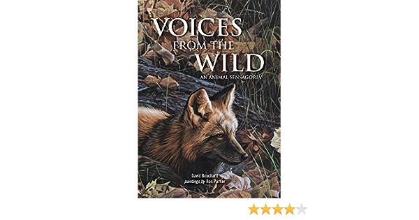 Voices from the Wild: An Animal Sensagoria: Amazon.es ...