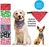 Seasonal Dog Bandana Collar, Set of 6