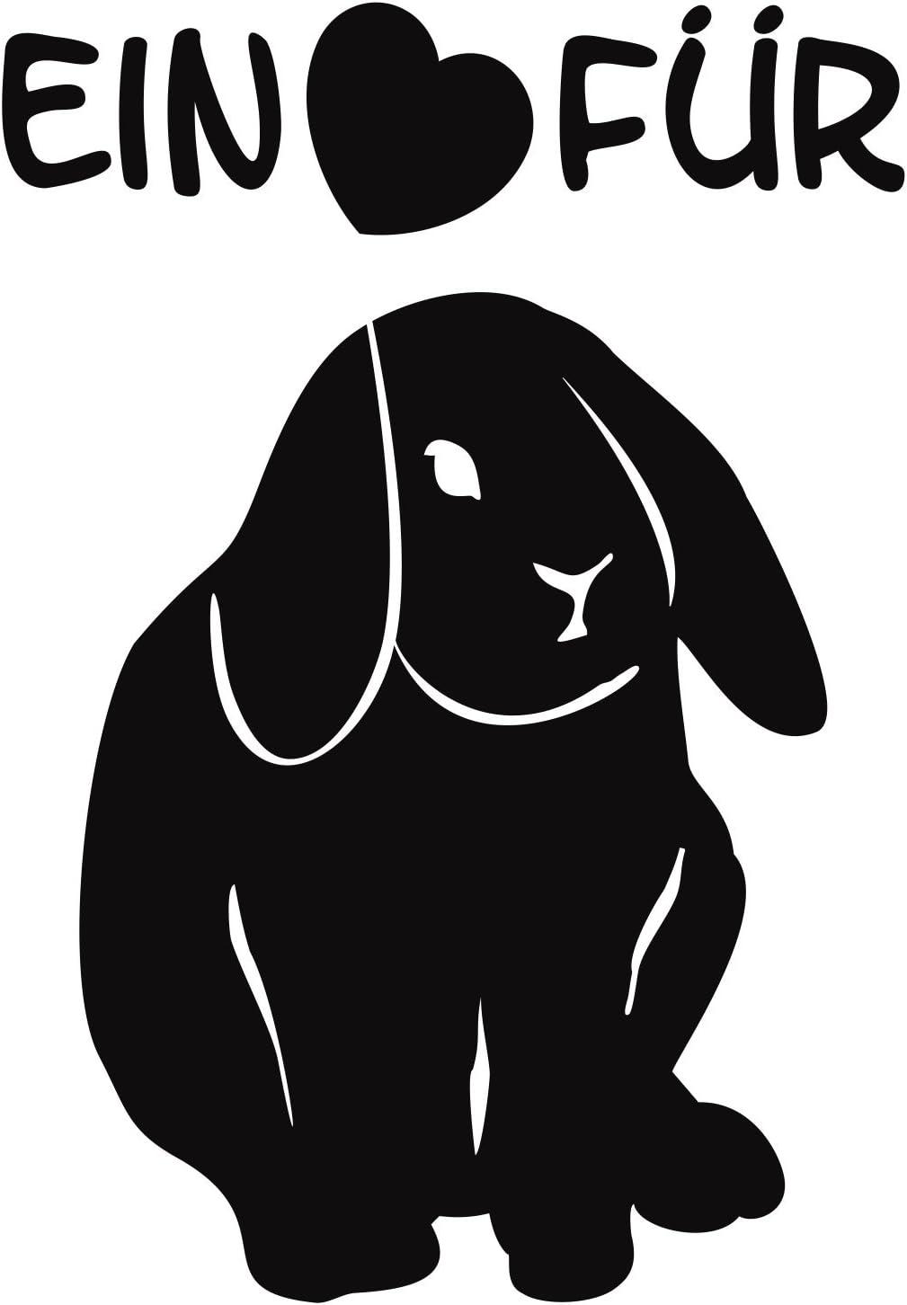 Folistick Ein Herz Für Kaninchen Aufkleber Tierschutz Laptop Aufkleber Autoaufkleber Schwarz Auto