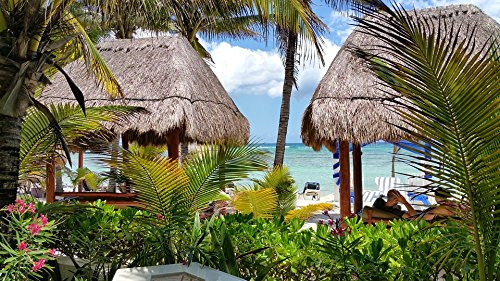 LAMINATED POSTER Hut Palms Thatch Beach Hotel Mexico Resort Poster 24x16 Adhesive Decal (Palms Hotel Resort)